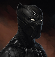 Black panther costume 1