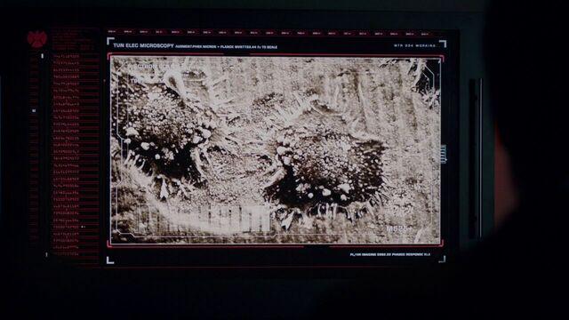 File:Hive's Parasites.jpg