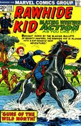 Rawhide Kid Vol 1 118