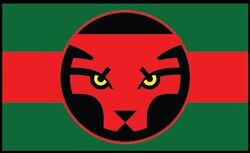Flag of Wakanda from Black Panther Vol 6 4 0001