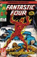 Fantastic Four 14 (NL)