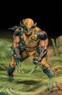 Wolverine Origins Vol 1 37 Textless