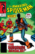 Amazing Spider-Man Vol 1 289
