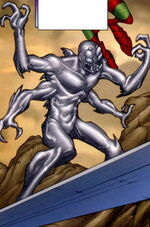 Silver Surfer (Earth-TRN430) Marvel Adventures Fantastic Four Vol 1 48