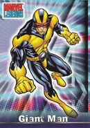 Henry Pym (Earth-616) from Marvel Legends (Trading Cards) 0001