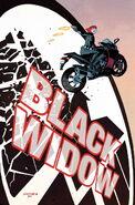 Black Widow Vol 6 1 Textless