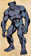 Henry McCoy (Earth-616) from Official Handbook of the Marvel Universe Vol 1 2 0001