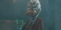 Howard the Duck (disambiguation)