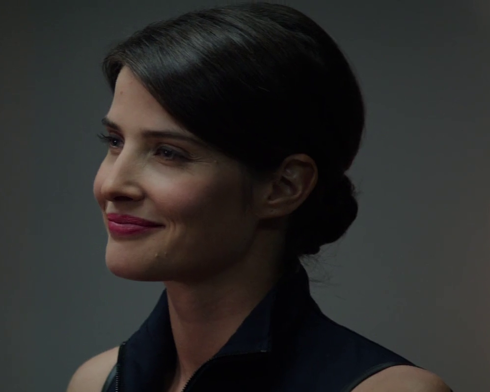 Image Maria Hill Smiling Png Marvel Movies Fandom