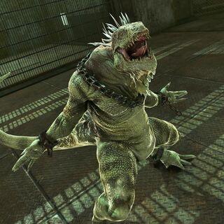 The Iguana.