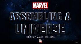 Assembling a Universe