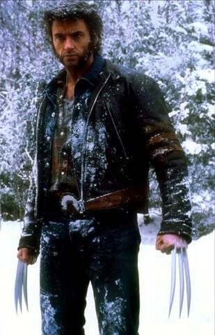 File:Wolverinesnow.jpg