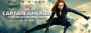 Black Widow TWS banner