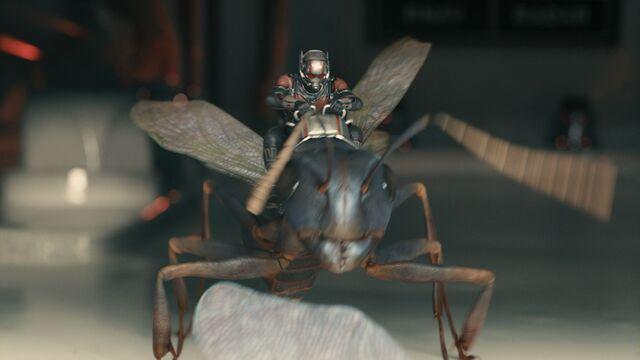 File:Ant-Man and Antony.jpg