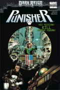 The Punisher (Dark Reign)