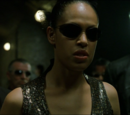 Cast of The Matrix Reloaded