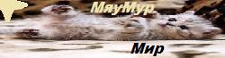 МяуМур Мир