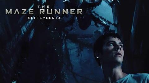 The Maze Runner Dangerous Place HD 20th Century FOX