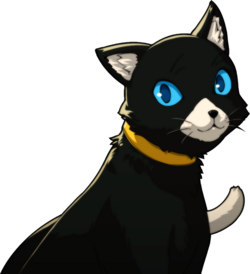 Persona  Morgana Cat Irl