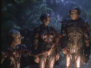 Borg-carne.jpg