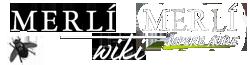 Merlí Wikia