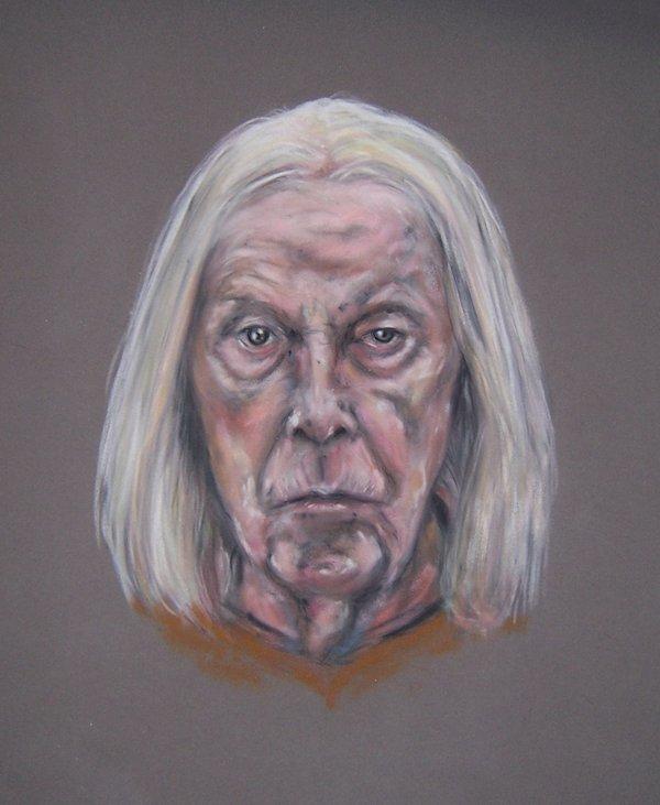 richard wilson and the british arcadia