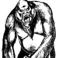Grey apes