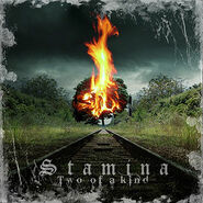 Stamina - Two of A Kind