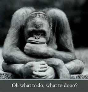 File:Monkey thought.jpg