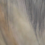 Dhorse hair6