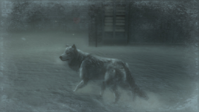 File:Wolf Pic 3 (Metal Gear Solid 4).png