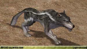 File:Alpha Wolf 2.jpg