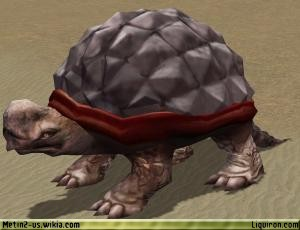 File:Desert Tortoise 1.jpg