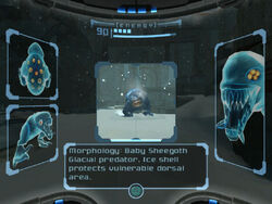 Ice Ruins East entrance Baby Sheegoth scan images dolphin hd.jpg