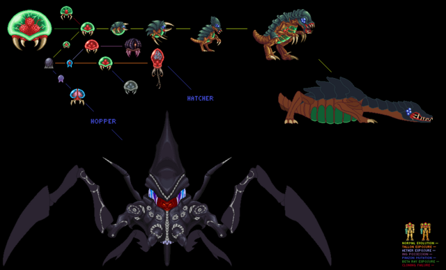 File:Metroid Evolution Chart.png