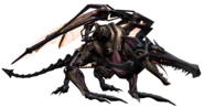 Omega Ridley rip