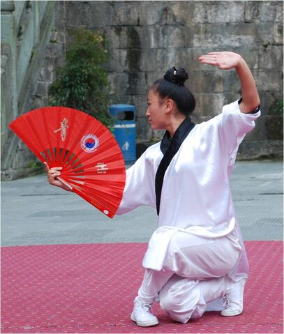 File:Tai chi fan form.jpg