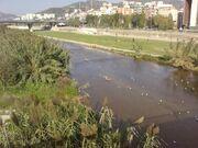 Río Besòs