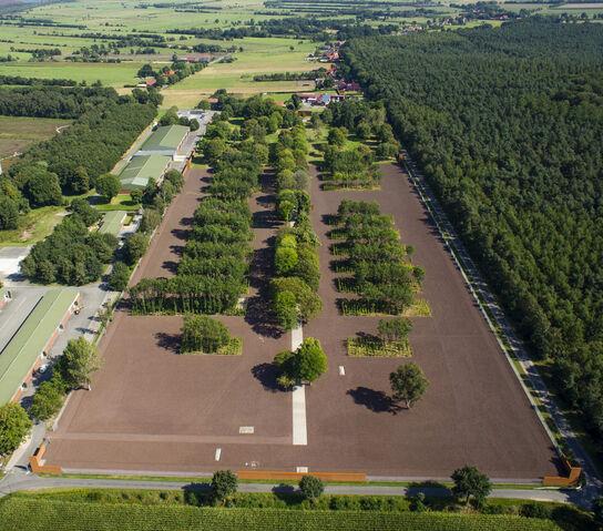File:Wes-gedenkstaette-esterwegen-14-schraegluftbild-foto-stefan-schoening project images wide.jpg
