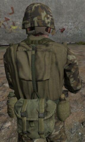 File:Westland army back.jpg