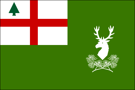 File:Silvaen Military Flag.png