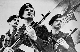 800px-Soviet naval infantrymen DN-SN-86-00829