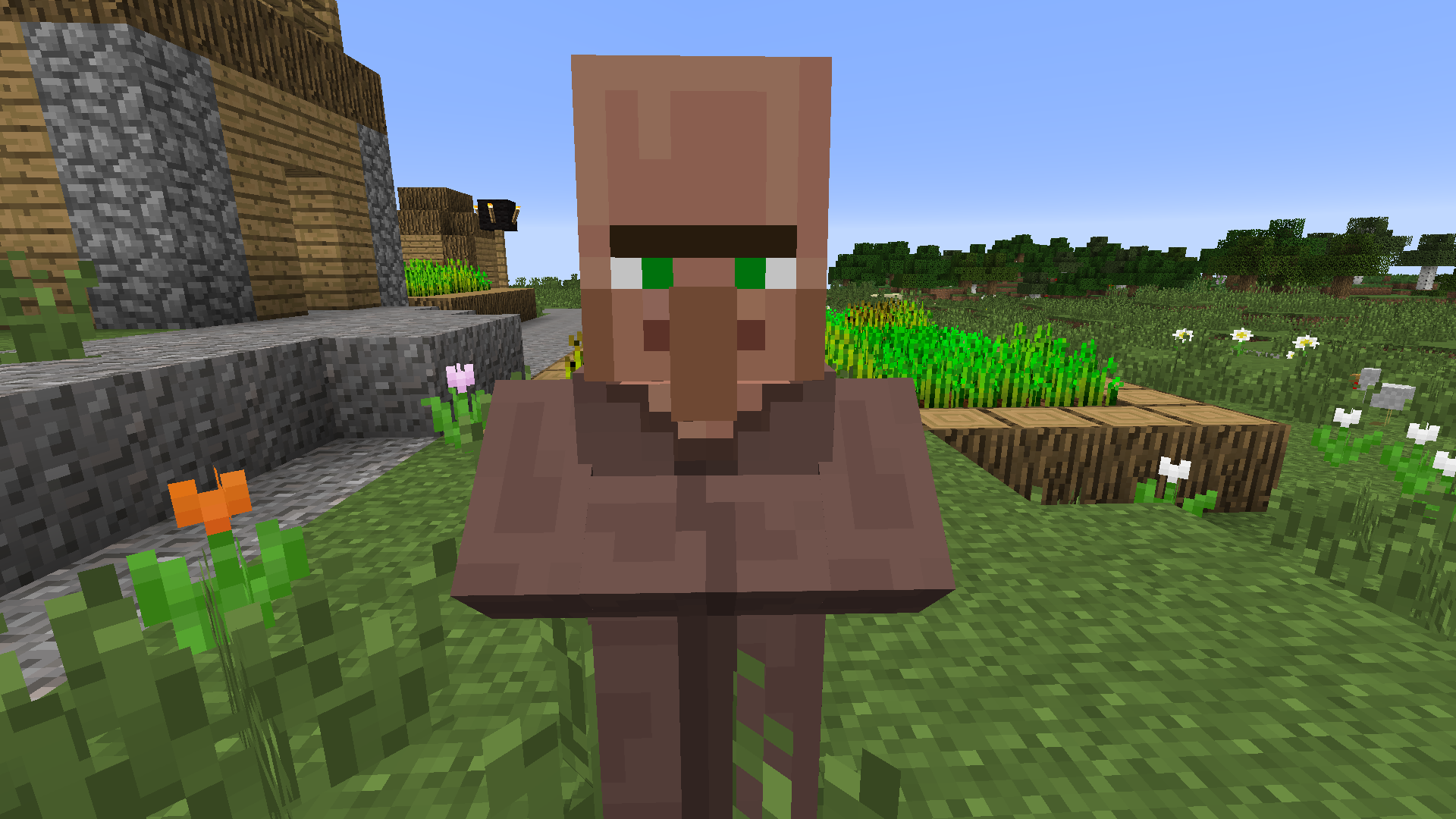Minecraft Mobs Quiz By Hopalcirace Timer Related Keywords Suggestions Long