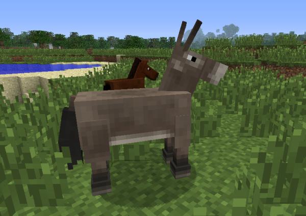 Minecraft Mule Gallery