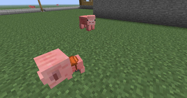 File:Baby Pig.png