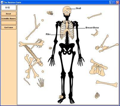 File:GmpSkeleton-lgeScrnShot-TradeBit.jpg