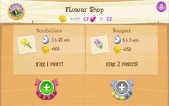 Flower Shop Products