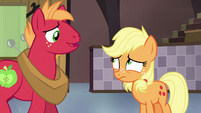 """Big McIntosh """"that's not entirely true"""" S6E23"""