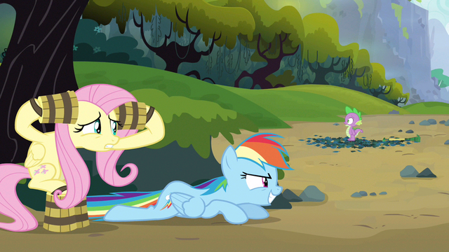 File:Rainbow Dash working well S3E9.png