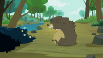 Bear unsuccessful at eating the fish S3E06